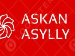 Askan Asylly
