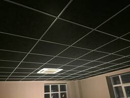 Чёрные потолки и черные стеновые панели Rockfon - фото 4