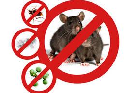 Дезинфекция от насекомых и грызунов