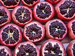 Экспорт фруктов, овощей и зелени