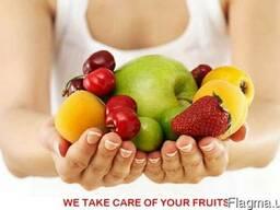 Фасовочно-упаковочные линии для фруктов и овощей (Италия)