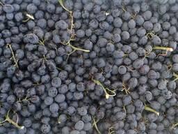 Фрукты, Виноград (кишмиш)
