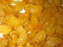 Изюм жёлтый гигант 1, 2,3 сорт - фото 2