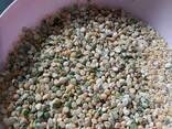 Корм и отходы фасоли - фото 6