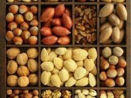 Миндаль орехи экспорт