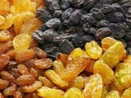 Оптовые поставки изюма из Узбекистана