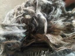 Продается мытая овечья и козья шерсть.