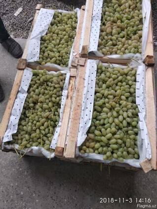 Продаётся Виноград