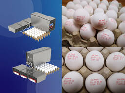RN Mark EP-5H принтер для маркировки яиц технология DOD