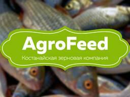 Рыба. Комбикорм гранулированный для рыбы. Самарканд