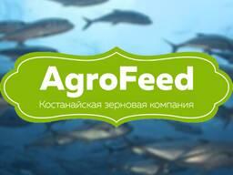 Рыба. Комбикорм гранулированный для рыбы. Бухара