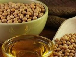 Семена масличных культур(хлопчатник, подсолнух, соя, сафлор) - фото 2