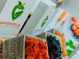 Сухофрукты, свежие овощи и фрукты, бобовые, орехи