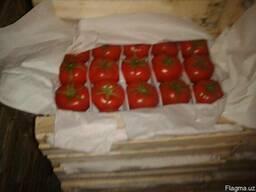 Свежие помидоры - фото 3