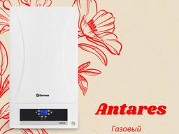 Thermex Antares