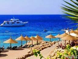Тур в Египет (Шарм-эш-Шейх) по доступным ценам