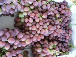 Виноград высшие сорта и сладкий перец
