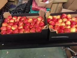 Яблоки из Польши! - фото 5