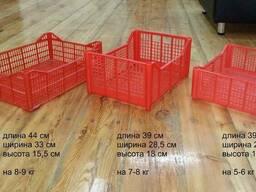 Ящики одноразовые 10 кг